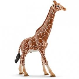 Schleich - World of Nature - Wild Life - Afrika - Giraffenbulle