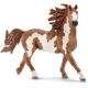 Schleich - World of Nature - Farm Life - Pferde - Pinto Hengst