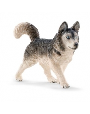 Schleich - World of Nature - Farm Life - Hunde - Husky