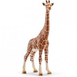 Schleich - World of Nature - Wild Life - Afrika - Giraffenkuh
