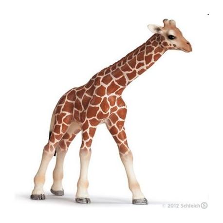 Schleich - World of Nature - Wild Life - Afrika - Giraffenbaby