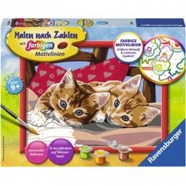 Ravensburger Spiel - Malen nach Zahlen mit farbigen Motivlinien - Zwei Schmusekätzchen