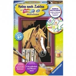 Ravensburger Spiel - Malen nach Zahlen mit farbigen Motivlinien - Pferd im Stall