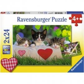 Ravensburger Puzzle - Verschlafene Kätzchen, 2x24 Teile