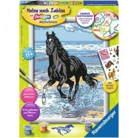Ravensburger Spiel - Malen nach Zahlen mit farbigen Motivlinien - Pferd am Strand