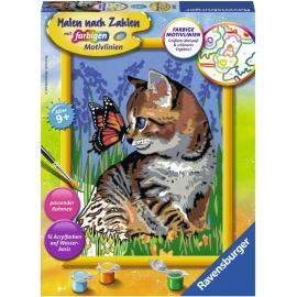 Ravensburger Spiel - Malen nach Zahlen - Katze mit Schmetterling