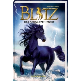 Blitz (Bd. 1) - Der schwarze Hengst
