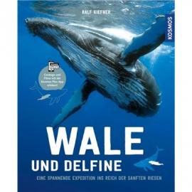 KOSMOS - Wale & Delfine