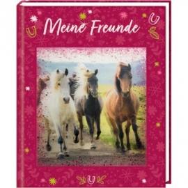 Coppenrath Verlag - Pferdefreunde - Meine Freunde mit 3-D-Bild