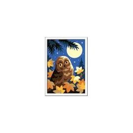 Ravensburger 28697 Eule im Mondschein