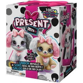 Spin Master - Present Pets - Fancy