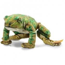 Steiff - Froggy Frosch 12 grün